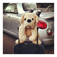 Mon doudou en vacances - Photo 3