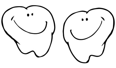 Dents en bonne santé