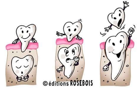 Pourquoi les dents de lait tombent-elles ?