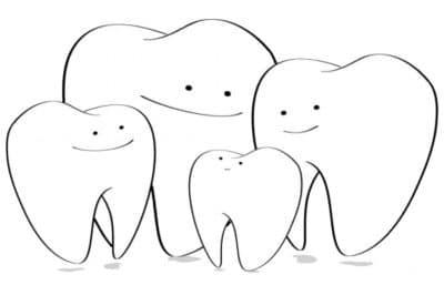 Différentes dents chez un enfant